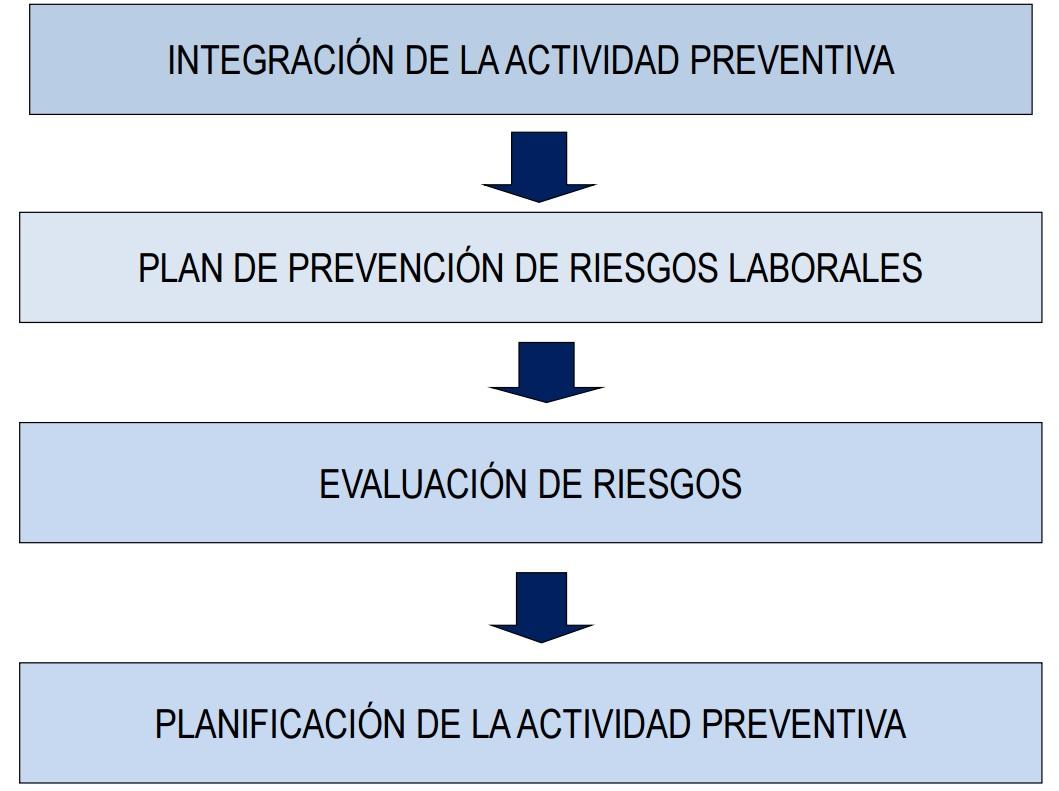 La gestión de la prevención de riesgos laborales en la empresa ...
